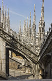 De Kathedraal van Duomo in Milaan Stock Fotografie