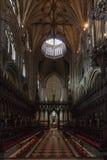 De kathedraal van Ely Royalty-vrije Stock Foto