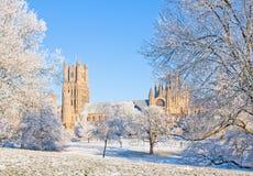 De kathedraal van Ely in zonnige de winterdag Stock Afbeelding