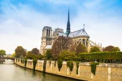De kathedraal van het Notre Dame de Paris Stock Foto's