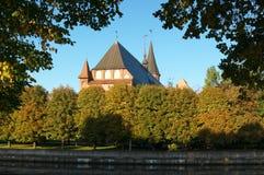 De kathedraal van Kant in Kaliningrad Stock Fotografie