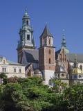 De Kathedraal van Krakau Wawel Stock Afbeeldingen