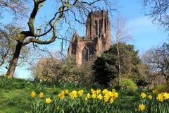 De kathedraal van Liverpool royalty-vrije stock foto's