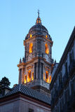 De kathedraal van Malaga, Spanje Stock Foto's