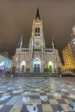 De Kathedraal van Mar del Plata, Buenos aires, Argentinië Stock Afbeeldingen