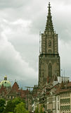 De Kathedraal van Munster, Bern Royalty-vrije Stock Afbeeldingen