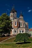 De Kathedraal van Nevsky van Aleksander in Tallin Stock Foto's