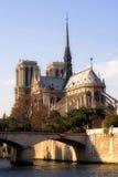 De kathedraal van Notre-Dame Stock Afbeeldingen