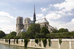De Kathedraal van Notre Dame, Parijs Stock Afbeelding