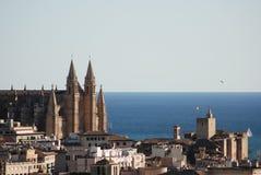 De kathedraal van Palma DE Mallorca Stock Foto's