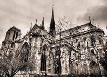 De kathedraal van Parijs Notre Dame Royalty-vrije Stock Afbeeldingen