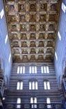 De kathedraal van Pisa Royalty-vrije Stock Fotografie