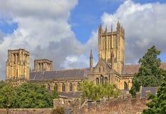 De kathedraal van putten, Somerset, Engeland Royalty-vrije Stock Foto