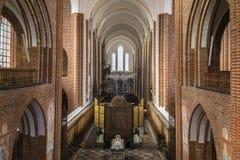 De Kathedraal van Roskilde, Denemarken royalty-vrije stock foto's