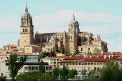De kathedraal van Salamanca Royalty-vrije Stock Foto's