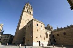 De kathedraal van Salamanca Stock Afbeeldingen