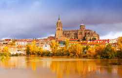 De Kathedraal van Salamanca in november Stock Fotografie