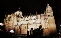 De Kathedraal van Salamanca, Spanje Stock Foto