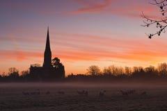 De kathedraal van Salisbury bij dageraad. Stock Fotografie