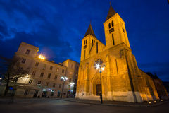 De Kathedraal van Sarajevo Stock Fotografie