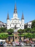 De Kathedraal van StLouis stock afbeelding
