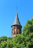 De Kathedraal van torenkoenigsberg Royalty-vrije Stock Foto