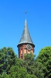 De Kathedraal van torenkoenigsberg, Gotische 14de eeuw Stock Afbeelding