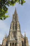 De Kathedraal van Ulm Stock Afbeeldingen