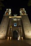 De kathedraal van Valladolid bij nacht Stock Foto's
