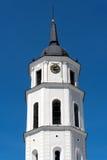 De kathedraal van Vilnius Stock Afbeeldingen