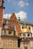 De Kathedraal van Wawel in Krakau Royalty-vrije Stock Foto