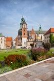 De kathedraal van Wawel in Krakau Royalty-vrije Stock Foto's