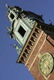 De Kathedraal van Wawel in Krakau, Polen stock foto's
