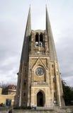De Kathedraal van Wurzburg, Duitsland Stock Fotografie
