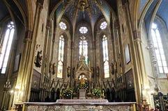 De kathedraal van Zagreb stock fotografie