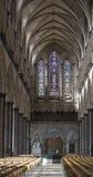 De Kathedraalschip en doopvont van Salisbury Royalty-vrije Stock Foto