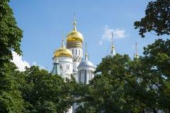 De Kathedralen van het Kremlin Stock Foto