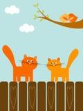 De katten van de liefde Royalty-vrije Stock Afbeeldingen