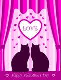 De katten van de valentijnskaart Stock Fotografie
