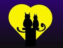 De katten van de valentijnskaart Royalty-vrije Stock Foto's