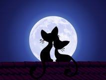 De katten zitten op het dak en staren bij de maan Royalty-vrije Stock Afbeeldingen