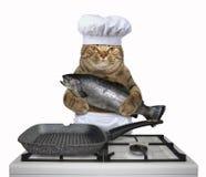 De kattenchef-kok houdt een grote forel stock foto