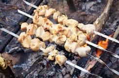 De kebab wordt gebakken over een brand met rook camping Stock Afbeelding