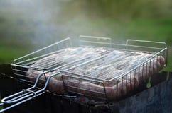 De kebabs van kippenvleugels zijn gebraden op het gebied Een klassieke barbecue in openlucht Het proces om vlees op charcoa te br royalty-vrije stock afbeeldingen