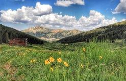 De keet en Continentaal verdeelt in Rocky Mountains stock foto's
