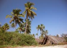 De keet op het strand stock foto's