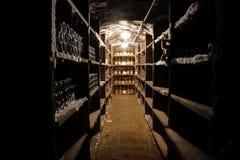 De kelder van de wijn stock foto's