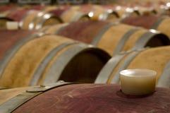 De kelder van de wijn met barriquevaten stock fotografie