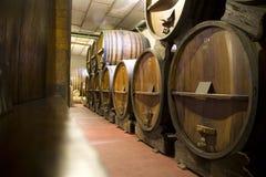 De Kelder van de Wijn van Argentinië Stock Afbeeldingen