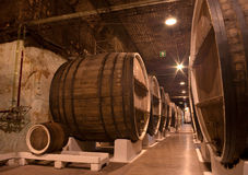 De kelder van de wijnmakerij Stock Afbeeldingen
